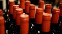 vin-praemie