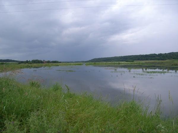 Vådområder